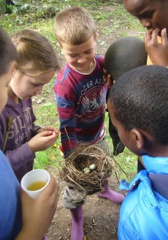 een nestje ontdekt op buurtnatuurtuin Liendert